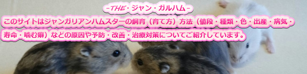 ジャンガリアンハムスターの飼育方法(育て方)